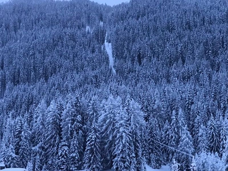 Zware sneeuwval verwacht in Franse Alpen