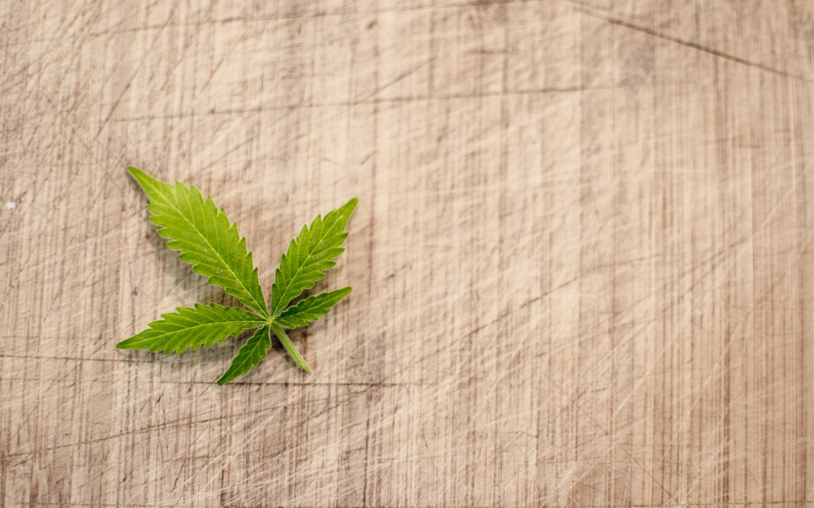nieuws snowrepublic drugs frankrijk