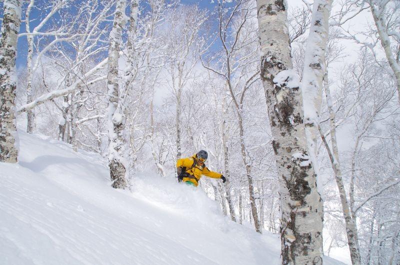 Poedersneeuw Japan