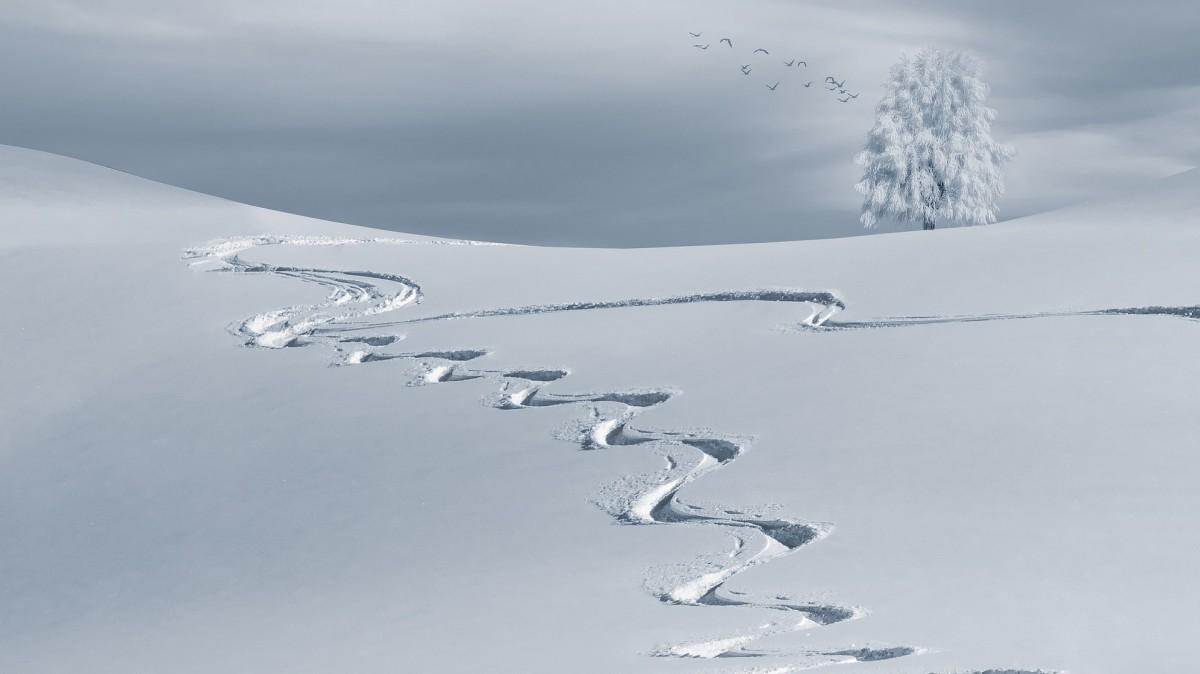 oorsprong van het skiën