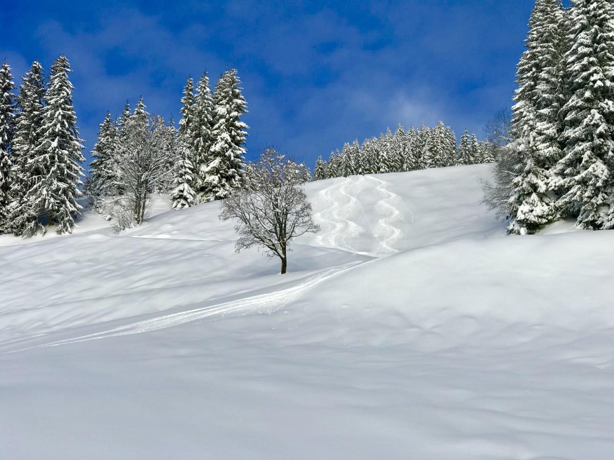 Verse sneeuw in aantocht