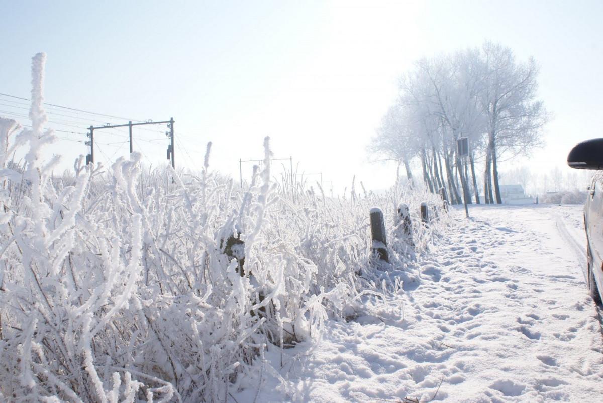 sneeuw nederland onderweg