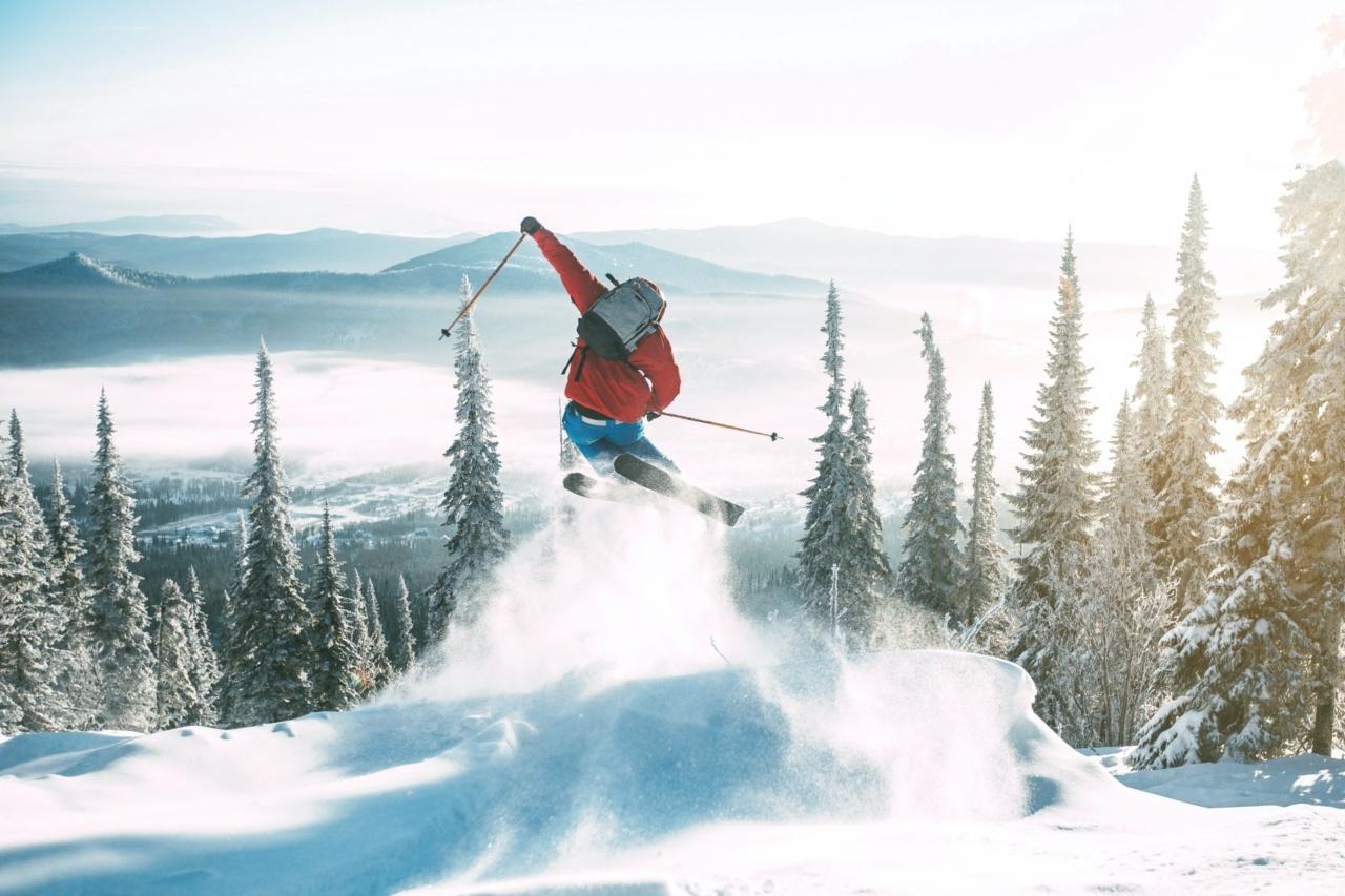 Hirscher ski's